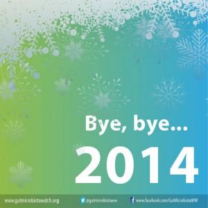 bye-bye-2014-copia