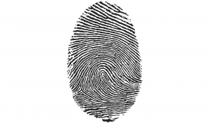 blog_fingerprint