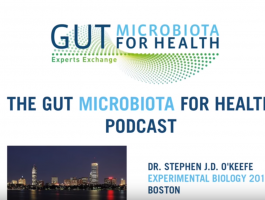 Podcasts Archives - Gut Microbiota for Health