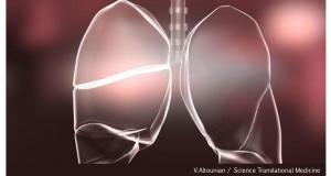 asma blog