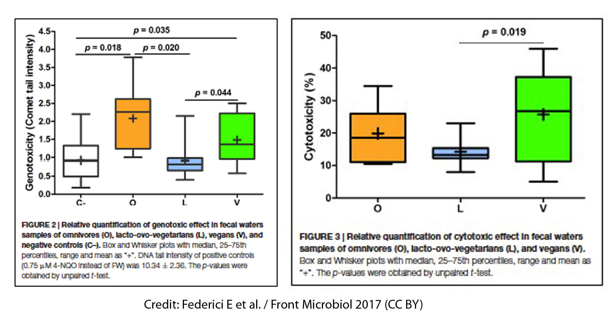 Impact of vegan diets on gut microbiota: An update on the clinical implications
